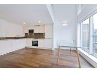 Stunning 2 Bedroom Apt in a Modern development with 24hr concierge. 2 modern, luxurious bathrooms!