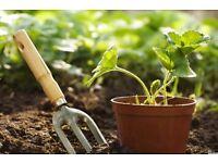 J&L Gardening Services