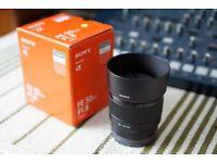 Sony FE 50mm f/1.8 Lens for E-Mount SEL50F18F