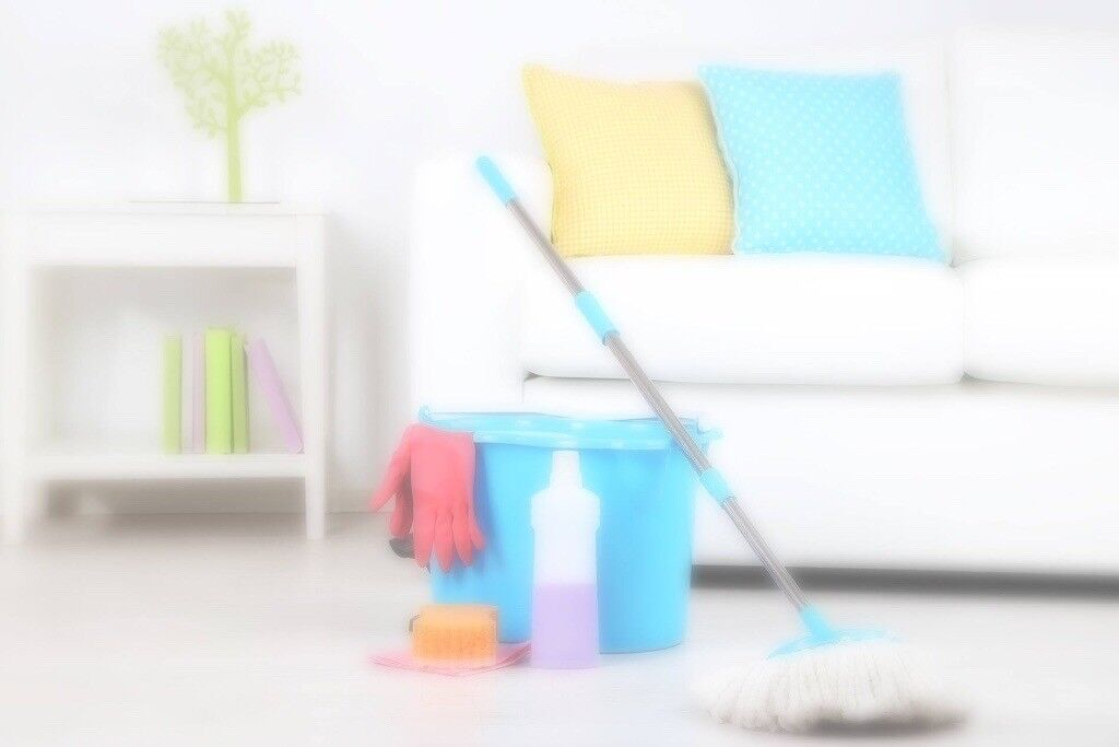 Domestic Home Cleaning