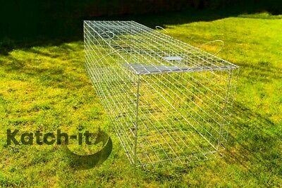 Fox trap - live catch