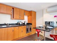 BRIGHT 1 BEDROOM FLAT AVAILABLE ***MARYLBEONE***BAKER STREET***