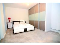 Bright Well Decorated Serviced Apartments Available Right Now!