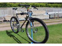 Giant Super Sierra 1988 Mountain Bike