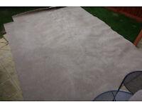 Beige or cream CARPET 370cm x 260