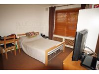 Very Spacious Studio Flat with Separate Kitchen-SW16-Streatham Hill-Perfect for a couple or single!!
