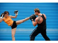 Martial Arts Instructor - Personal instructor or group / team instructor available