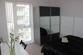 BRAND NEW FULLY FURNISHED STUDIO (PENTHOUSE) TO RENT