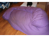 Beanbag sofa needs new home. Slightly faded purple colour is FREE to a good home.