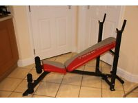 York fitness warrior 2 weights bench and abdominal bench combined. Perfect home gym bench