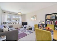 One bedroom flat - Clapham Junction - large private garden - Available January