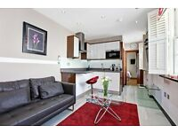 STUNNING ONE BEDROOM FLAT IN BAKER STREET *** GREAT LOCATION ***