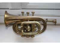 Rare Cornet / pocket Trumpet