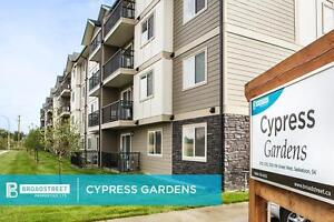 Pet friendly Two Bedroom Apartment w in-suite laundry Saskatoon