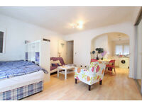 Large Bright and Newly Refurbished Luxury Studio Flat in Soho