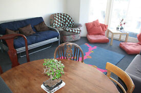 Double bedroom in friendly 5-bed flatshare, central Brighton, available July 2017