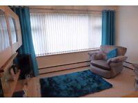 Curtains Rug & Cushion