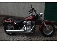 2002 Harley Davidson FXST 1450cc, low and mainly dry mileage, MOT & FSH