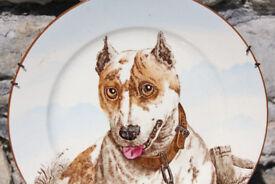 Stunning and Rare Antique Victorian Dog Plate Cauldon English Bull Terrier