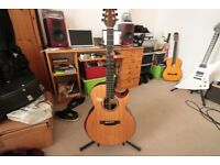 Terry Pack Acoustic guitar , in near perfect condition, not gigged. And with LR Baggs pickup