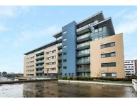 STUNNING 3 BED 2 BATH MODERN APARTMENT - AVAILABLE NOW