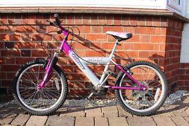 """20"""" Wheel, 6-Gear Minx Probike"""