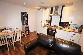 HIGH STANDARD - ONE DOUBLE BEDROOM - GARDEN FLAT - GREAT LOCATION - SW2 !!