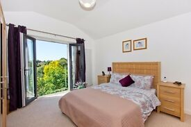 **Large Double with Juliette Balcony and En-suite... High ceiling and lovely green views **