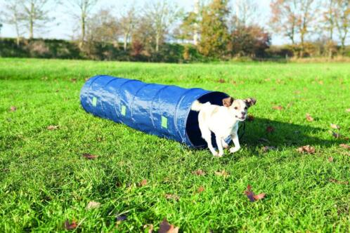 Trixie Dog Activity Agility Tunnel - Hondensport - 40x200 cm