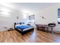 Very large New Studio flat to let in North Finchley N12 - Part bills included