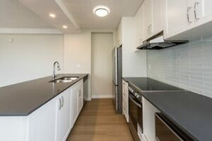 1 Bedroom at 1005 Jervis Street, Vancouver, British Columbia, V6