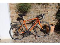 Specialized Allez 2015 Road Bike