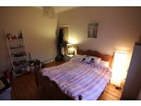 ROOM FOR COUPLES. Large house with beautiful garden, bike storage and free parking