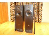 TDL - RTL2 Transmission line speakers - mint condition - Great sound - Stunishing sound stage