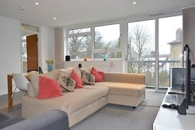 MODERN, CONTEMPORARY 2 BEDROOM CLOSE TO PUTNEY AND SOUTHFIELDS!!