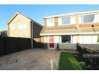3 bedroom house in Whinfell Avenue, Eaglescliffe, TS16 (3 bed)