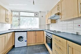 5 bedroom, 3 bath flat with communal garden - 3 mins from Oval and Stockwell Station
