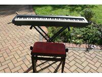 Yamaha Digital Keyboard P-95 Black 88-Note