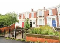 Pristine 3 Bed Flat TO-LET GATESHEAD Saltwell Place **DSS WELCOME** **LOW FEES**