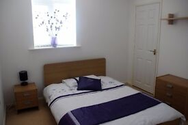 Double room in shared professional house