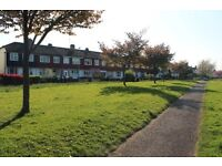 LARGE BRIGHT 3 BED HOUSE WITH GARDEN IN TOLWORTH