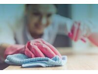 Reliable Domestic Cleaning Services in West London