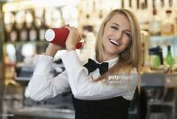 Bartender available for house parties/xmas parties/NYE parties
