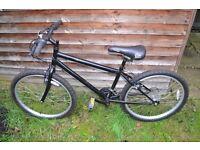 dunlop 24 inch mountain bike
