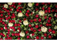 FLOWER WALL BACKDROP RENTAL - Luscious Green, Red and White Background for Weddings and Events