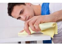 Professional, DSB checked, self employed, trustworthy and very experienced housekeeper available!