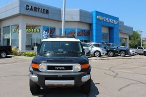2010 TOYOTA FJ CRUISER Groupe Complet