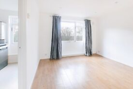 FABULOUS AND NEWLY RENOVATED ONE BEDROOM FLAT IN SE19.