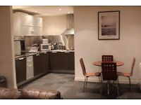 Fantastic 2 Bed Fully Furnished Flat in The Metropoltian Building
