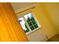 Builder, extension, brick work, painter, decorator, carpenter & plumber available now
